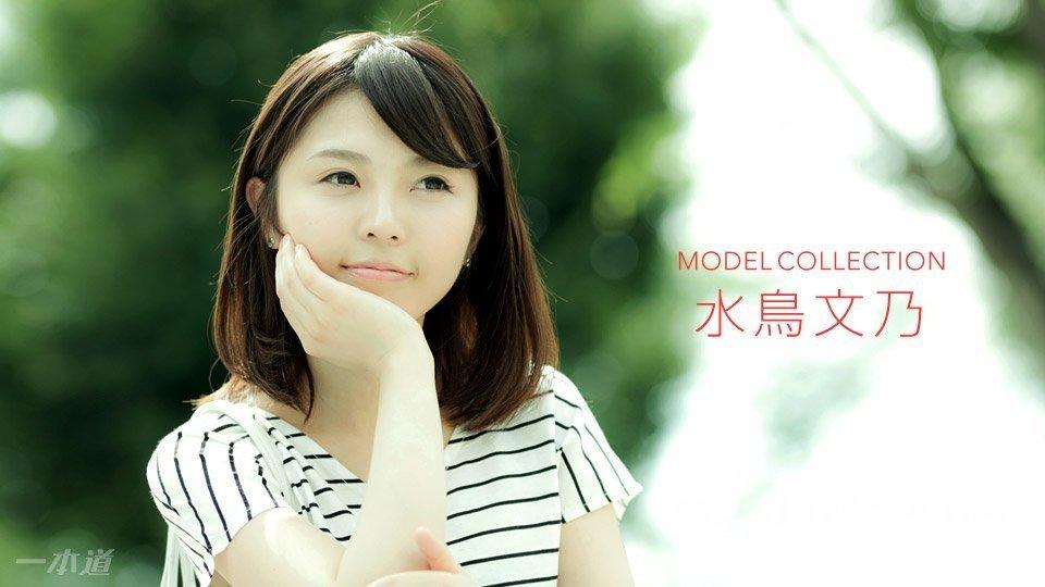 Shizuno Mizuko - Waterfowl Fumino